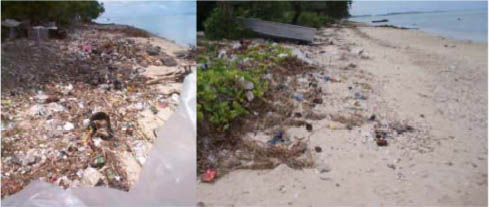 Before and after photos of Lagoonside beach