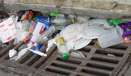 Plastic plates, bottles, and other litter piled on a sewer grate